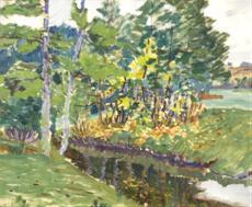 Stromy u potoka