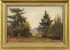 Na kraji lesa