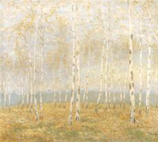 Podzim v březovém lese