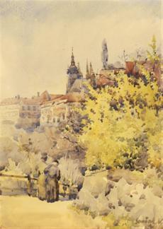 Pohled ze Seminářské zahrady
