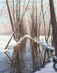 Zasněžené stromy u Botiče