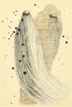 Dívka s dlouhým závojem
